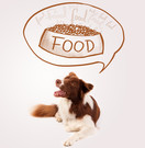Dogs are what they eat Image