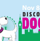 Discover Dogs - London's biggest dog event of 2014! Image