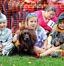 Chiswick House and Gardens Dog show 2014 Image